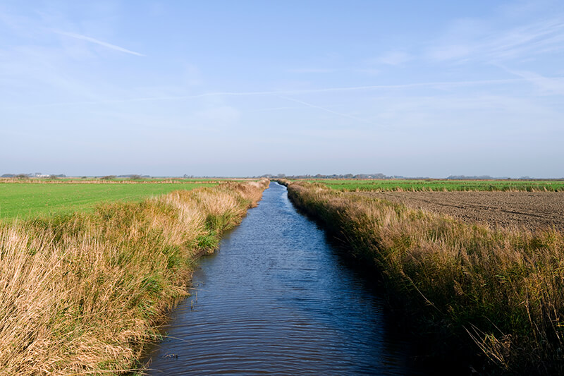 sussex conservation water